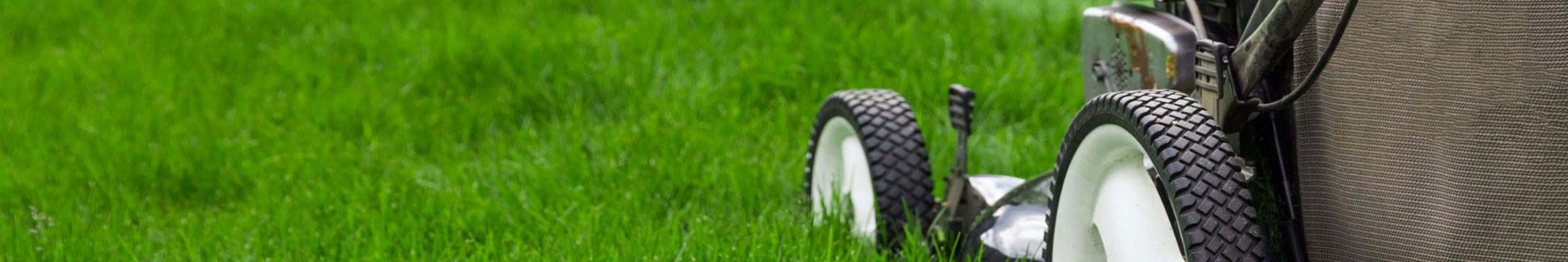Naslovna slika za Benzinske kosačice za travu