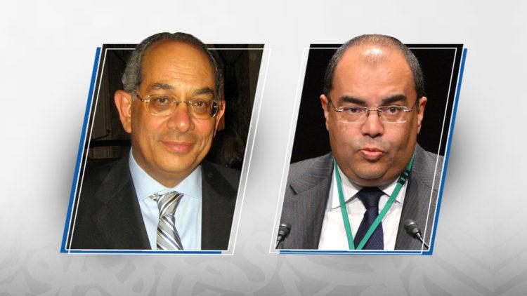 محمود محيي الدين، يوسف بطرس غالي، مصر، اقتصاد