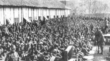 مذبحة نانجينج - الصين