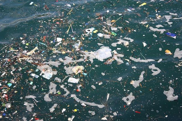 بلاستيك، بيئة، تلوث، محيطات، موت حيتان