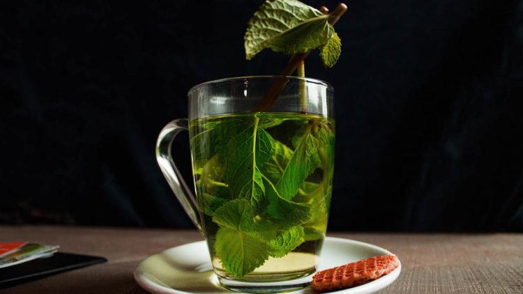 شاي أخضر, مضادات الأكسدة, فيتامينات, صحة, تغذية