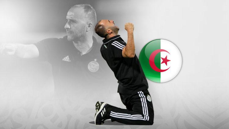 جمال بلماضي, الجزائر, كرة القدم الأفريقية