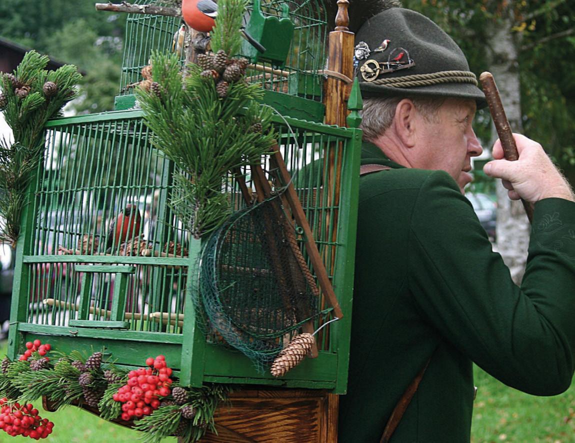 Der Vogelfang-Umzug in Goisern.