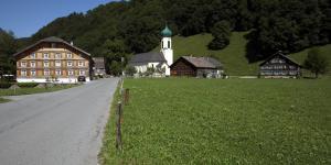Schnepfau