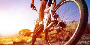 Mountainbike-Kongress