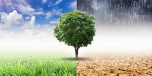 Klimawandel-Anpassungsmodellregionen