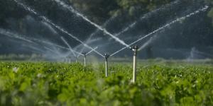Feld wird bewässert
