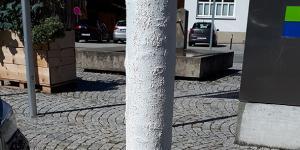 weiß bemalter Baum in Alberschwende