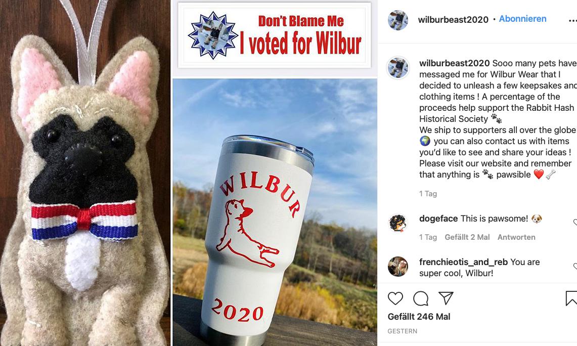 Der tierische Bürgermeister hat die Wahl vor allem über die sozialen Medien geführt - bei Instagram gab es eine ganze Wahlkampagne