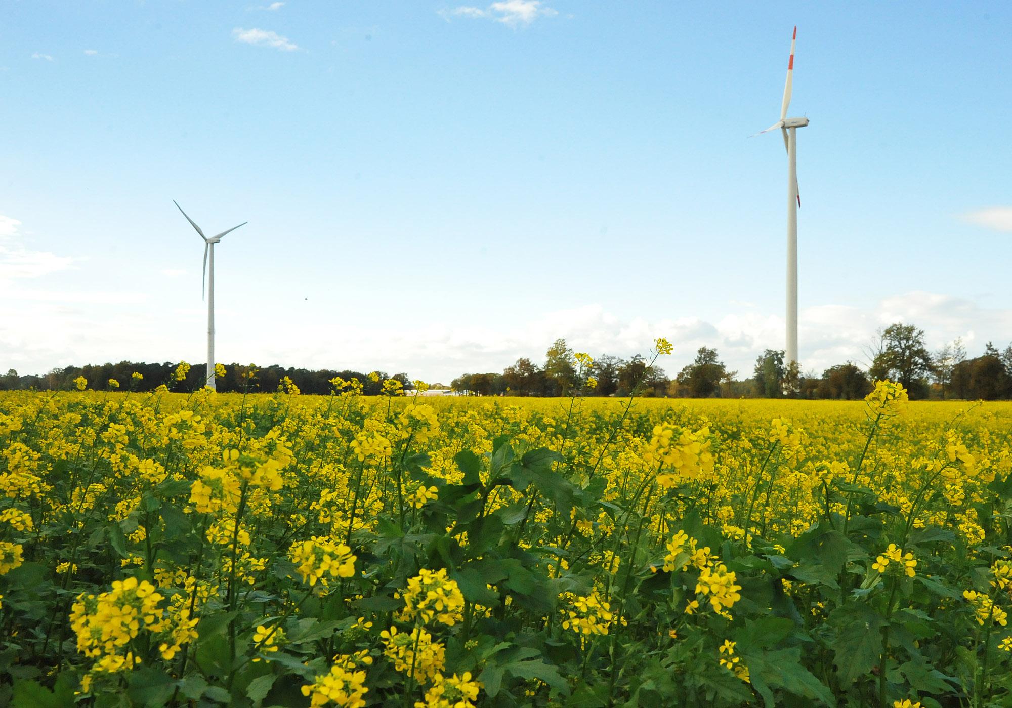 Grüner Wasserstoff für die kommunale Energiewende