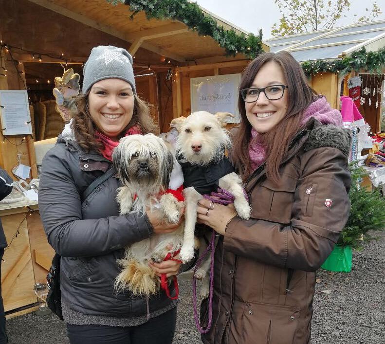 Hundeweihnachtsmarkt auf dem Erlebnisbauernhof Gertrudenhof
