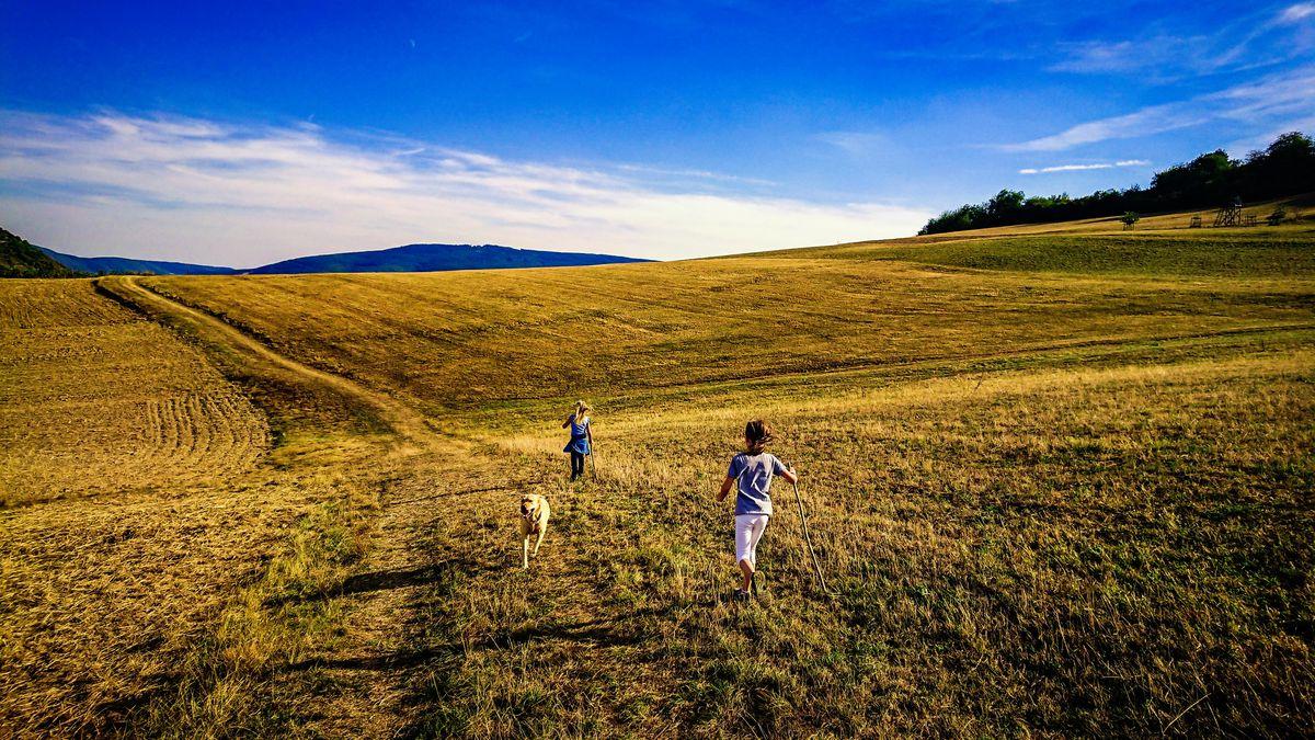 den demografischen wandel im ländlichen raum stoppen