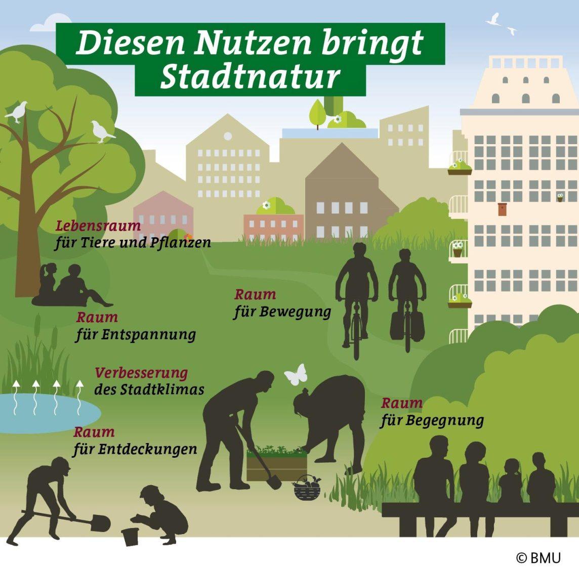 Masterplan Stadtnatur