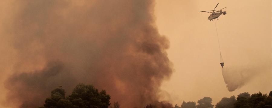 Die Zunahme von Waldbränden macht gute Notfallpläne der Kommunen immer wichtiger.