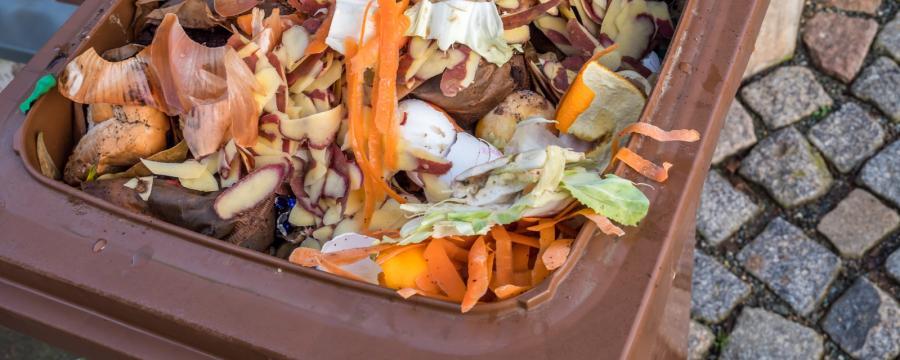 Kommunen wollen Metall und Plastik in Biotonnen reduzieren