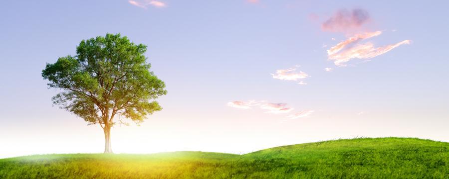 Klimaaktive Kommune Wettbewerb