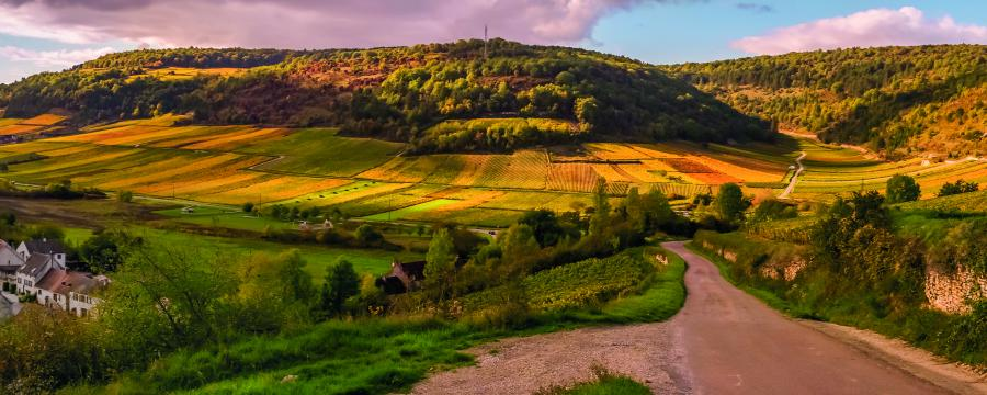 Das Dorf in der Zukunft
