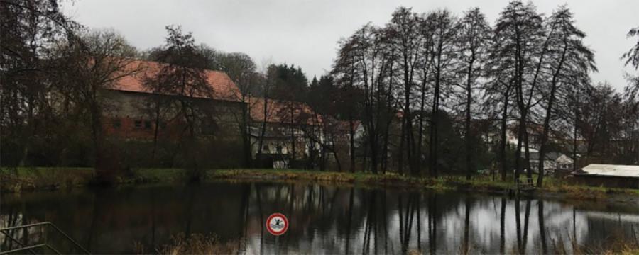Der Dorfteich in Neukirchen - ein Warnschild sagt, dass Eltern für Ihre Kinder haften - das Gericht hält das für nicht ausreichend!