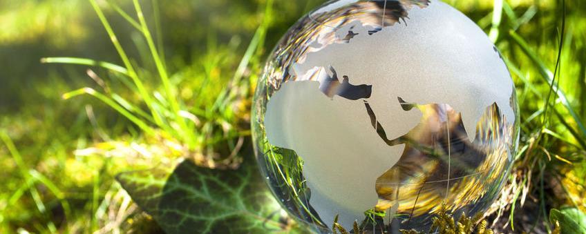 Klimaschutzmanager werden in immer mehr Kommunen aktiv - doch welchen Nutzen haben sie?