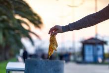 Müllvermeidung in der Kommune - Tipps und Tricks