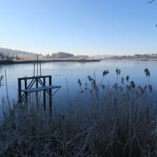 Badestellen an Seen müssen laut einem Urteil von der Kommune beaufsichtigt werden - sonst ist das Schwimmen nicht erlaubt, die Kommune in der Haftung