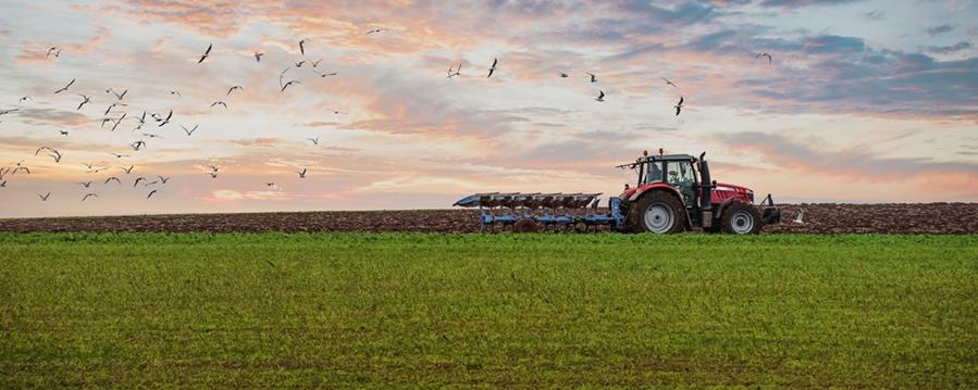 Die Landwirtschaft ist eine der tragenden Säulen unserer Wirtschaft - in diesen Städten ist sie wirtschaftlich besonders erfolgreich!