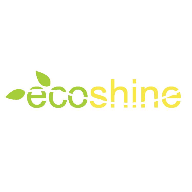 Ecoshine  Pranie Tapicerek i wykładzin