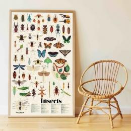 Joc creativ cu stickere Insecte, POPPIK