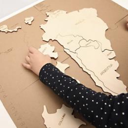 Set Puzzle Continente (Europa + Africa + America de Nord + America Centrala si de Sud + Asia)