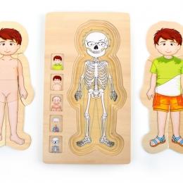 Puzzle din lemn corpul uman Tim