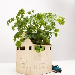 Orasul inverzit – Casa mica (nu contine plantele)