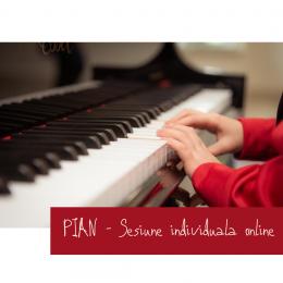 PIAN - Cursuri individuale online pentru copii sau adulti