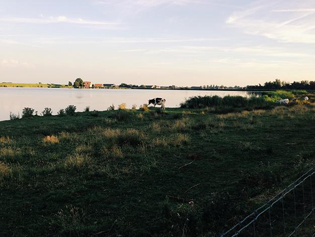 Nähe der Unterkunft