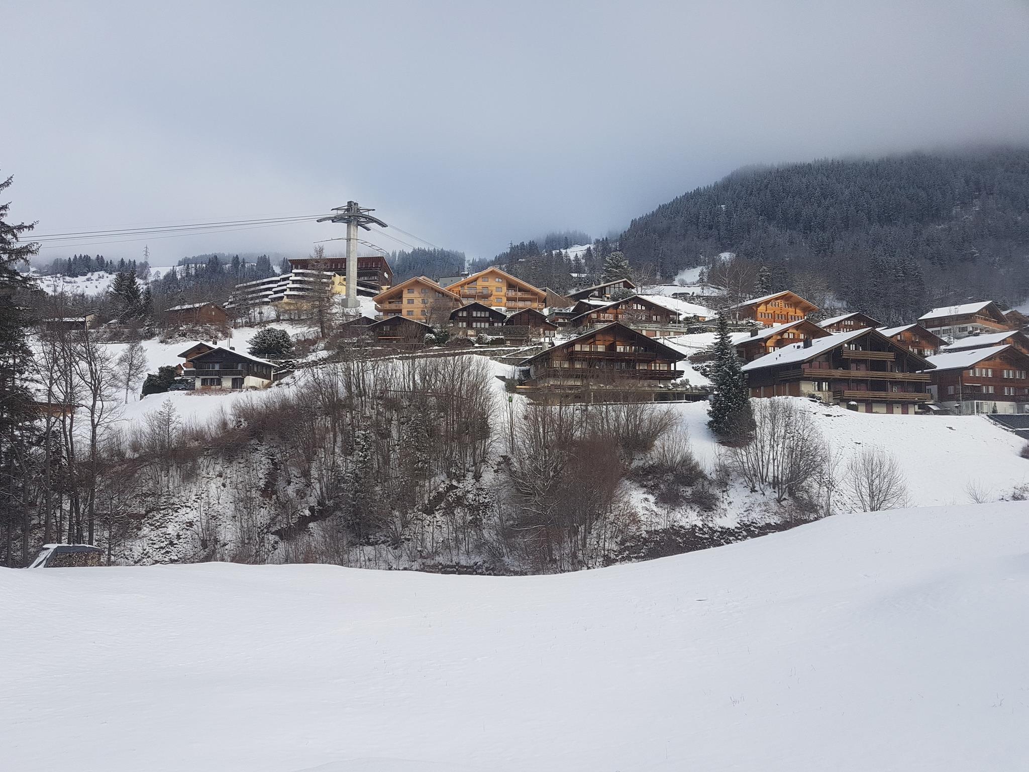 Appartement de vacances Grini-Hüs 8 Bett Wohnung (2691732), Hasliberg Reuti, Meiringen - Hasliberg, Oberland bernois, Suisse, image 2