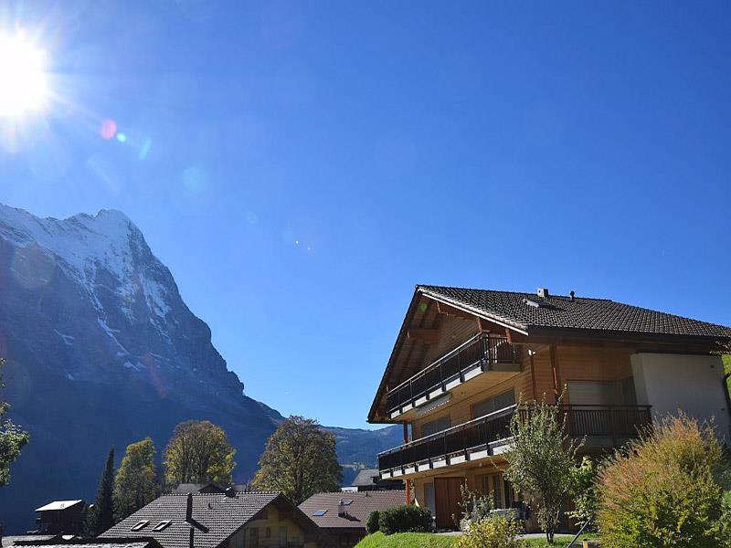 Appartement de vacances Steinbilla 2 Bett Ferienwohnung (2692218), Grindelwald, Région de la Jungfrau, Oberland bernois, Suisse, image 1