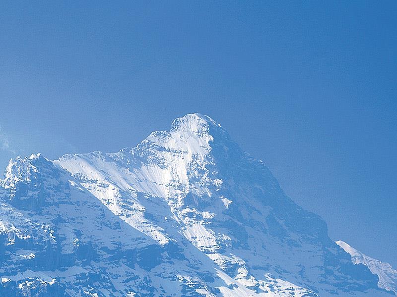 Appartement de vacances Steinbilla 2 Bett Ferienwohnung (2692218), Grindelwald, Région de la Jungfrau, Oberland bernois, Suisse, image 11