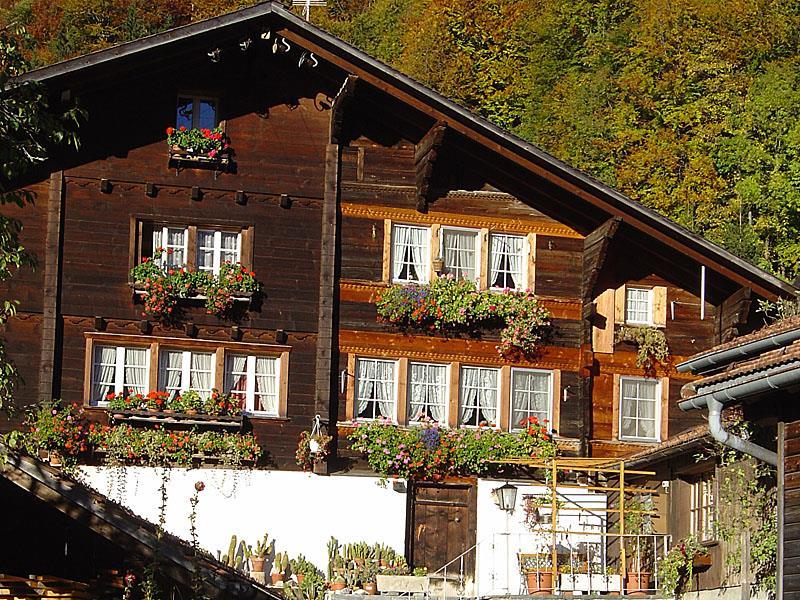 Ferienwohnung Haus Basilisk 6-Bettwohnung (2692281), Brünigen, Meiringen - Hasliberg, Berner Oberland, Schweiz, Bild 1
