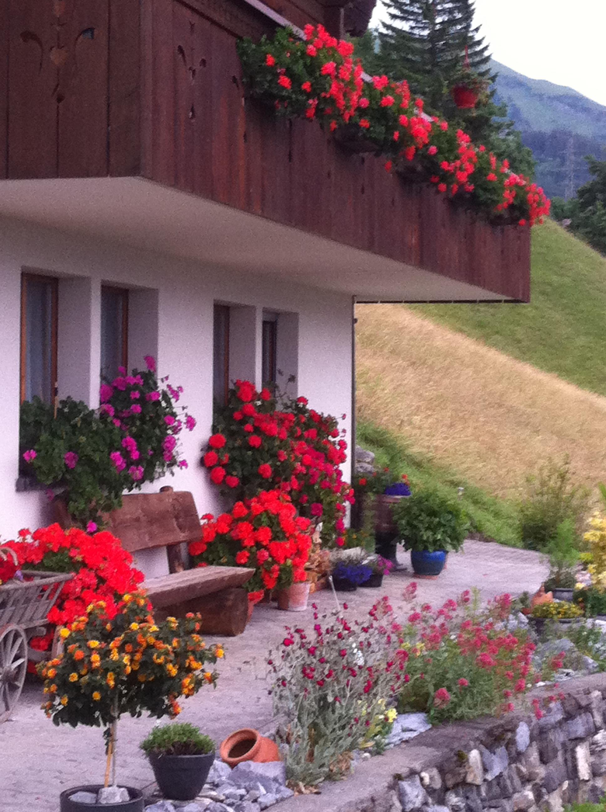 Ferienwohnung Anneliese Schaad Studio (2692311), Hasliberg Wasserwendi, Meiringen - Hasliberg, Berner Oberland, Schweiz, Bild 7