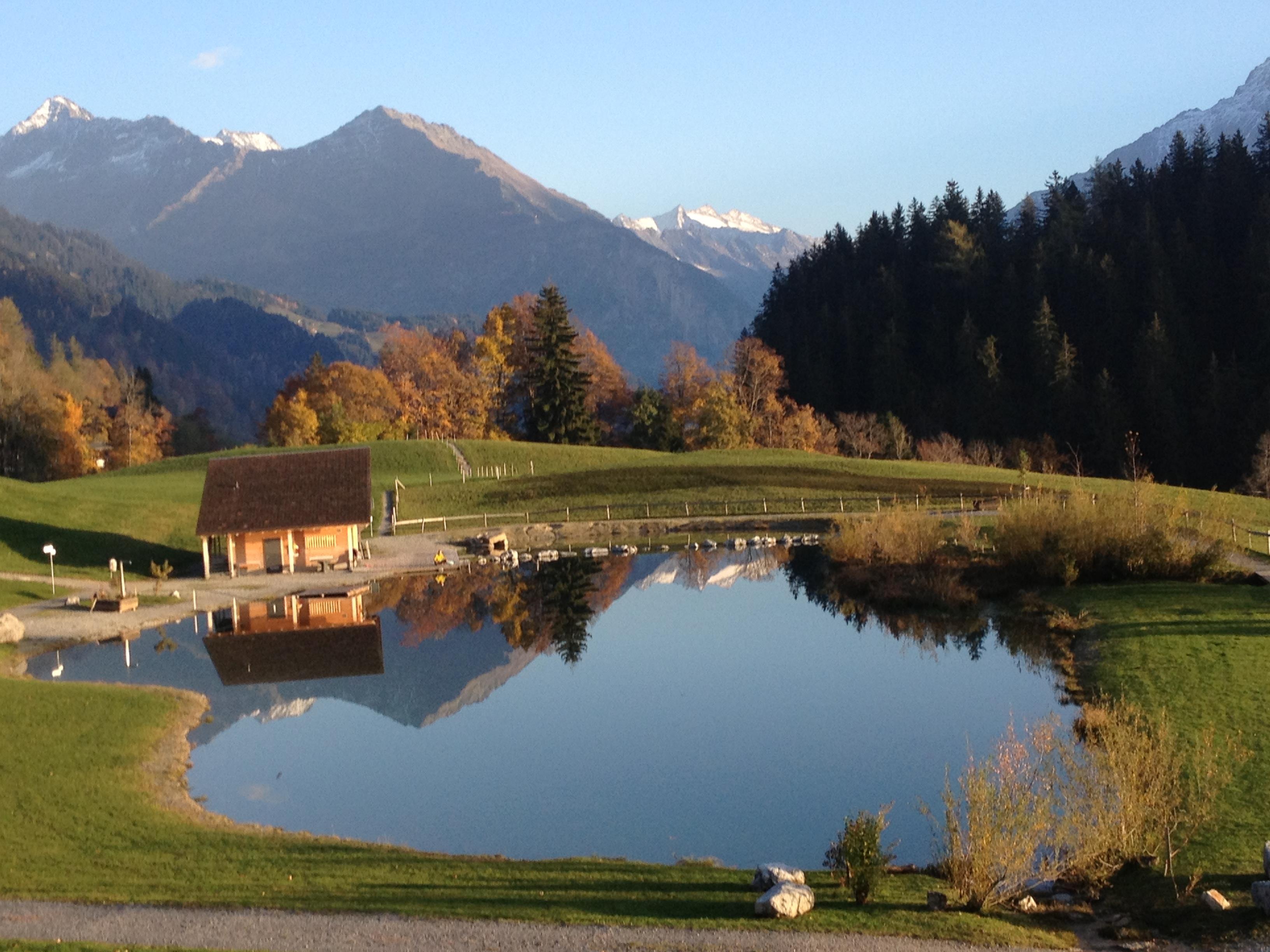 Ferienwohnung Anneliese Schaad Studio (2692311), Hasliberg Wasserwendi, Meiringen - Hasliberg, Berner Oberland, Schweiz, Bild 10