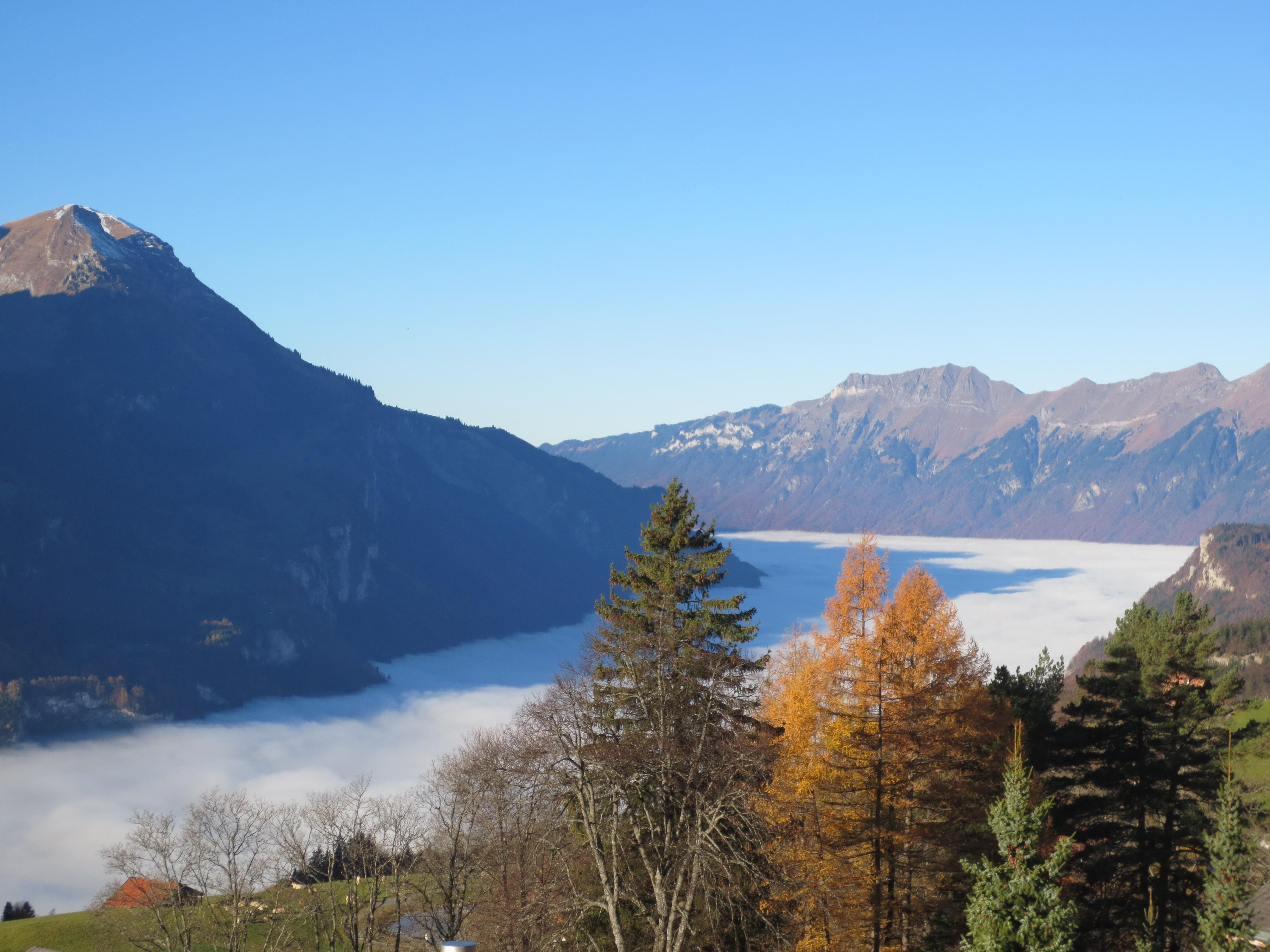 Ferienwohnung Anneliese Schaad Studio (2692311), Hasliberg Wasserwendi, Meiringen - Hasliberg, Berner Oberland, Schweiz, Bild 9