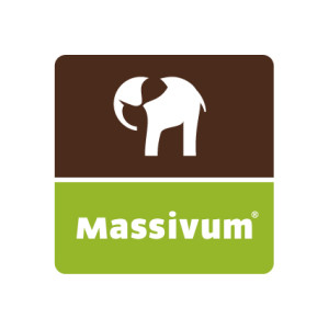 massivum - logo