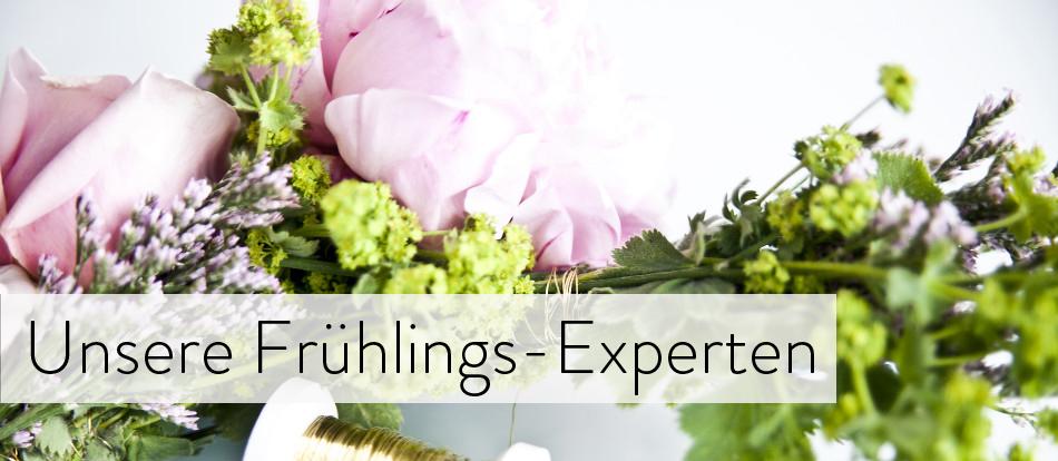Unsere Frühlings-Experten