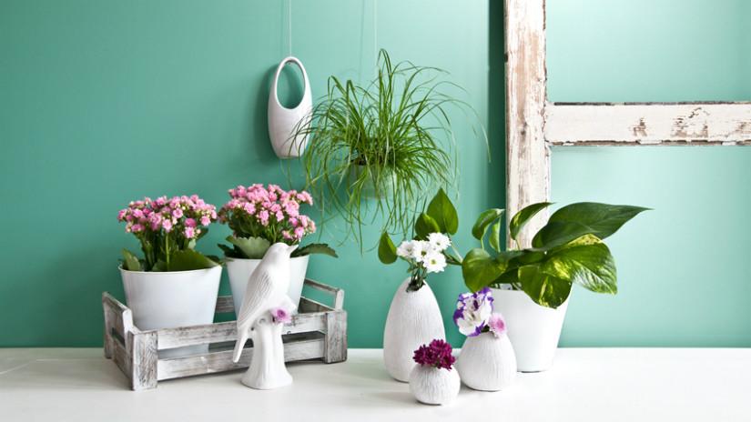 Kleiner Balkon mit Pflanzen gestalten