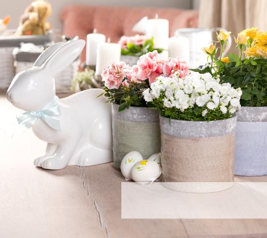 Ostern dekoration und geschenkideen westwing for Dekoration ostern