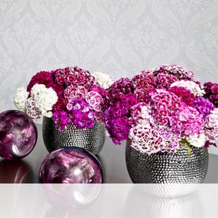 Vase schwarz
