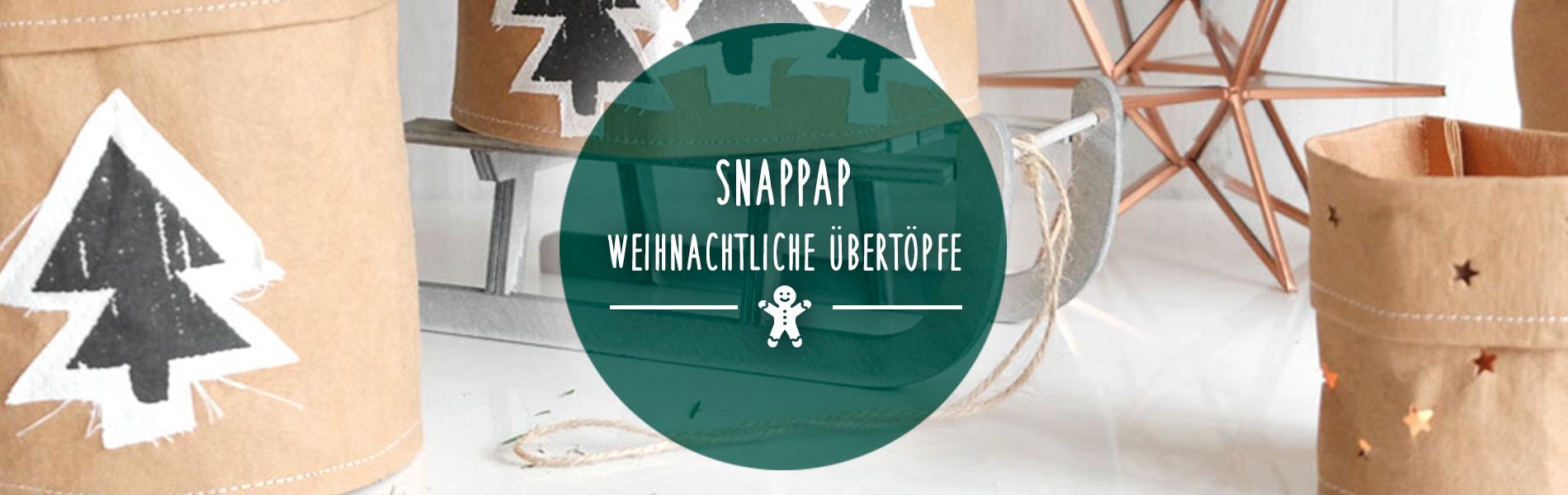 Christmas_SnapPap-weihnachtliche-Übertöpfe_top-banner-DE