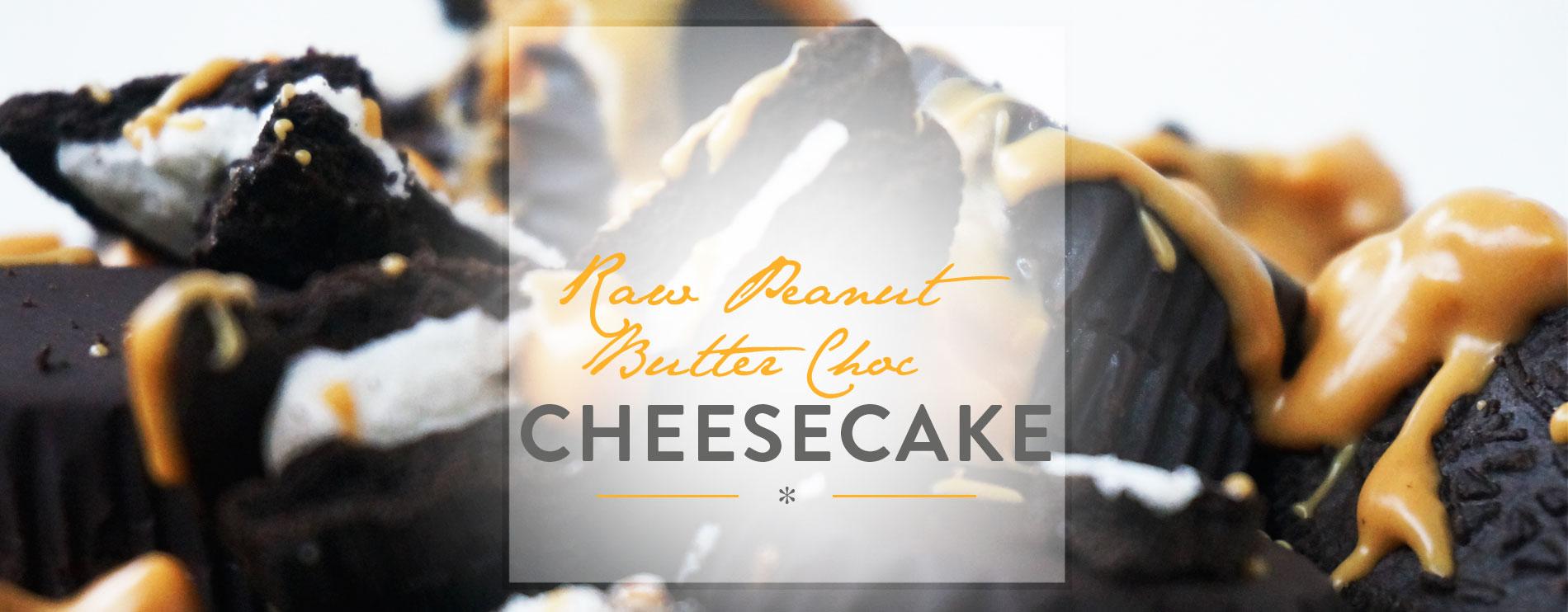 Header Raw Peanutbutter Chocolate Cheesecake