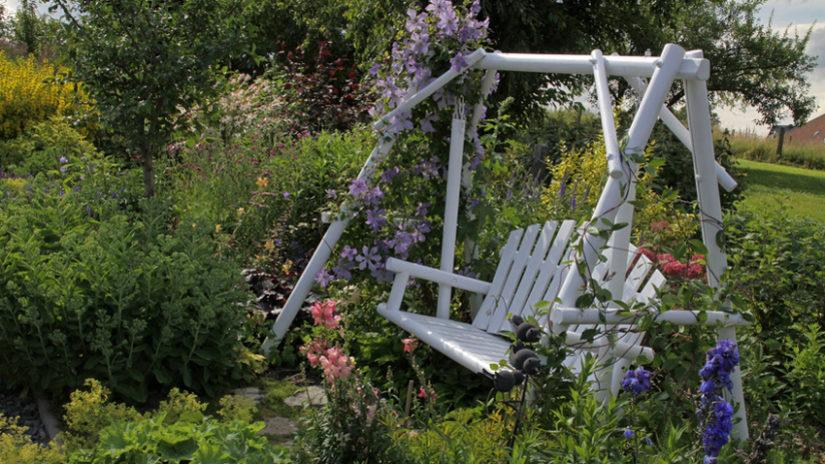 Ideas para jardín plantas