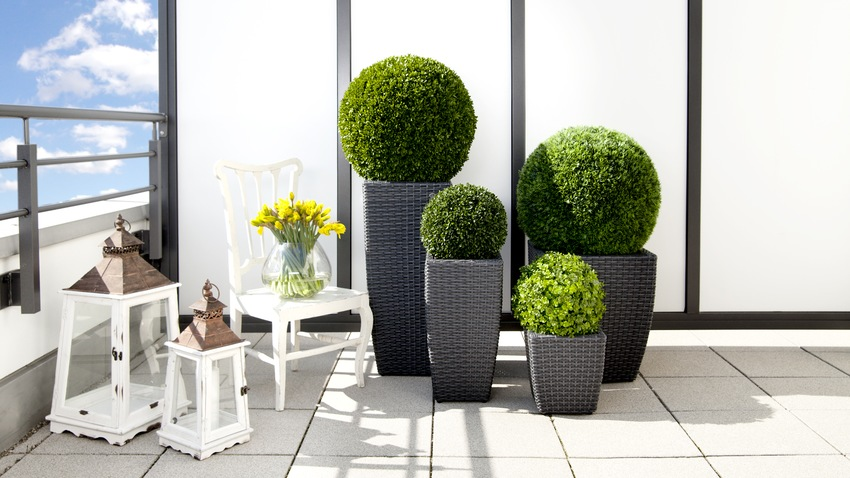 Decoraci n de balcones peque os ideas top westwing for Plantas modernas para jardin