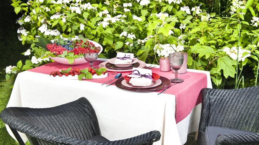 fiesta en casa en el jardin